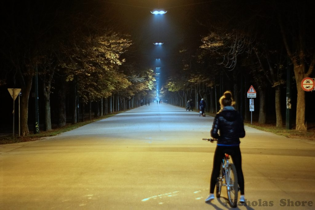 Vienna bike girl alley dark city
