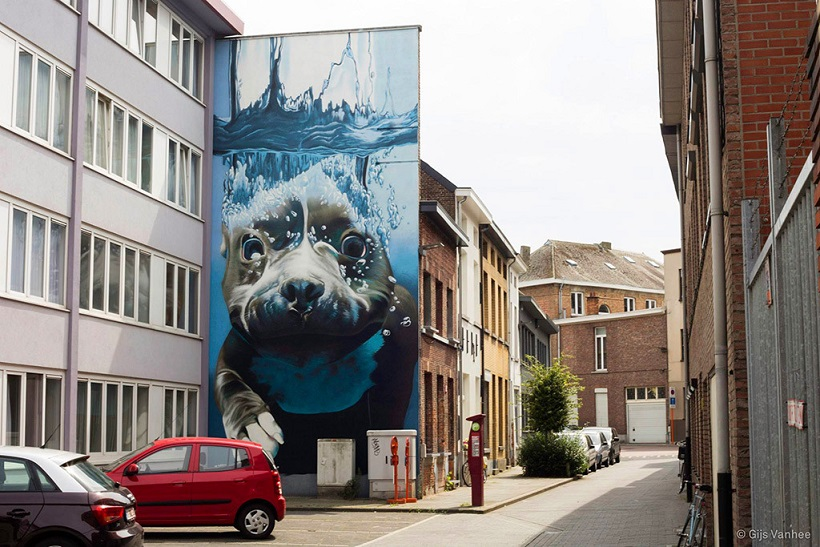 diving dog mural
